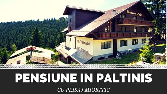 Pensiune in Paltinis cu peisaj mioritic